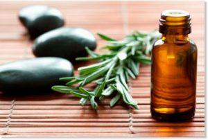 aceite de te verde donde comprar