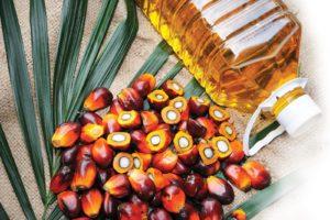 aceite de palma roja
