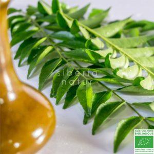 aceite de neem como usar