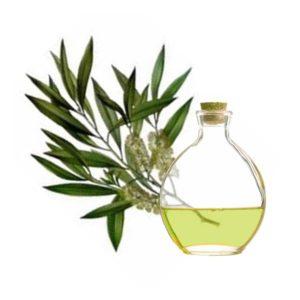 aceite de te verde para el acne