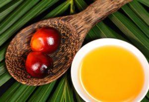 aceite de palma alto oleico