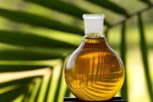 aceite de palma africana en colombia